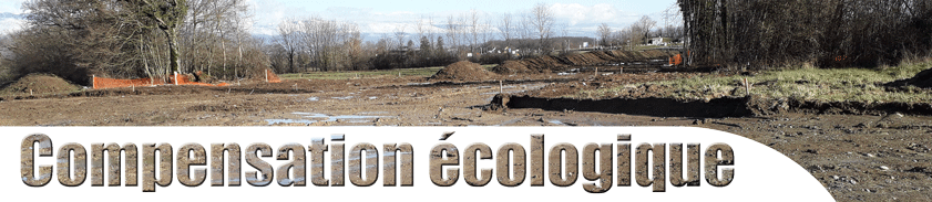 Bandeau-Comp-écologique