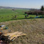 Plantation du verger communal avec l'école de Thairy